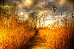 Hot air balloon in a cloudy sky floating over a boardwalk that is cutting through a field of tall orange golden grasses on either side